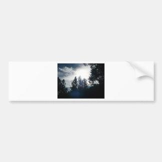 Dark Trees, Light Sky Bumper Sticker