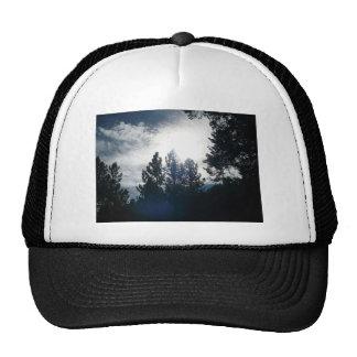Dark Trees, Light Sky Trucker Hat