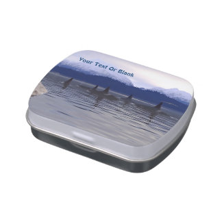 Dark Water Orca Jelly Belly Tin