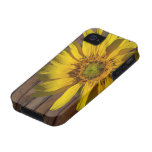Dark Wood Yellow Sunflower Country iPhone 4 Cases