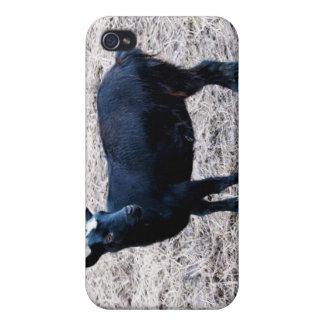 Dark Wool Case For iPhone 4