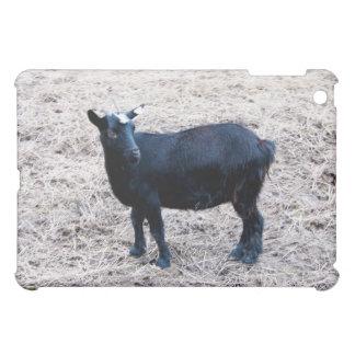 Dark Wool iPad Mini Covers