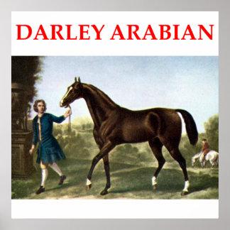 darley arabian poster