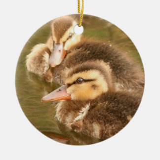Darling Ducklings Ornament