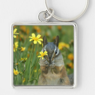 Darling Little Chipmunk Key Ring Silver-Colored Square Keychain
