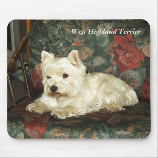 Darling Resting West Highland Terrier Mousepad