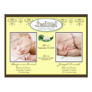 Darling Twin Boys Lemon Birth/Baby Announcement Post Card