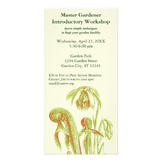Darlingtonia Carnivorous Plant Card
