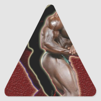 Darnell Jones The Beast 2.jpg Triangle Sticker