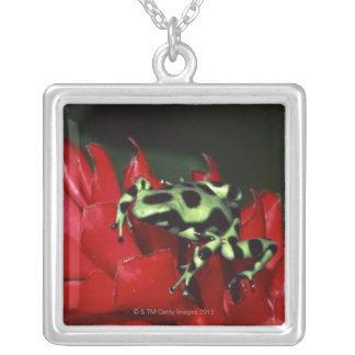 Dart frog 2 silver plated necklace