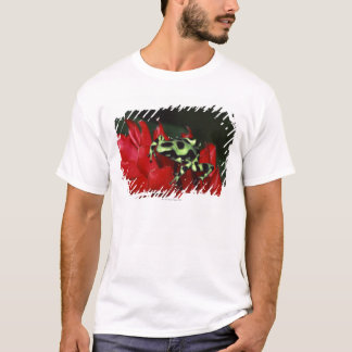 Dart frog 2 T-Shirt