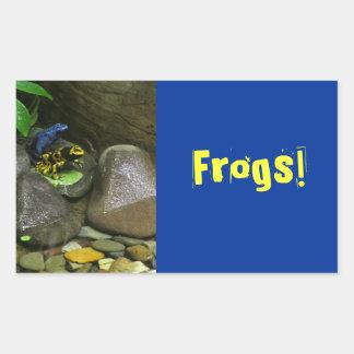 Dart Frog Buddies Rectangular Sticker
