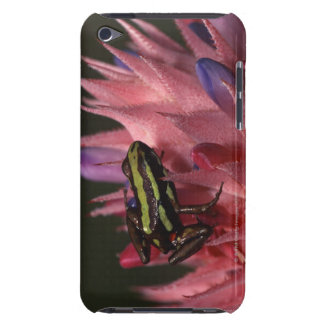 Dart frog iPod touch cover