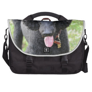 Dart Laptop Messenger Bag