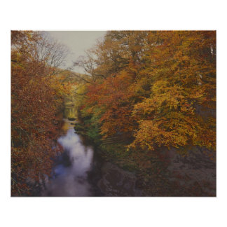 Dart River - Autumn Poster
