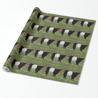 Dartmoor Belted Galloway Calf Looking Wrapping Paper