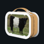 """Dartmoor Belted Galloway Calf Lunch Box<br><div class=""""desc"""">It is my pleasure and interest to see where the Belted Galloway Cattle are roaming and grazing on the wild landscape of Dartmoor.</div>"""