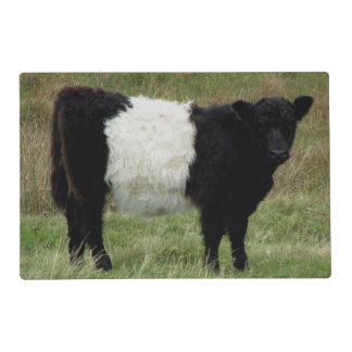 Dartmoor Belted Galloway Calf Placemat