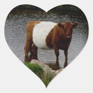 Dartmoor Belted Galloway Cow Standing In River Heart Sticker