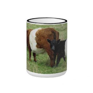 Dartmoor ceñió la vaca y el becerro de Galloway Tazas De Café