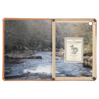 Dartmoor Early Spring River Dart Valley Rowbroook iPad Air Case