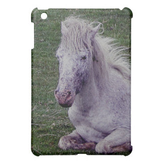 Dartmoor Grey Pony Mare Resting Cover For The iPad Mini