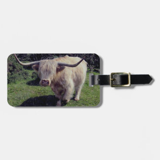 Dartmoor Highland Cow On The Move Luggage Tag