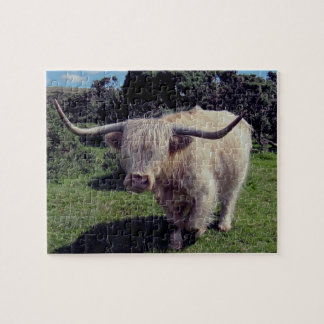 Dartmoor Highland Cow On The Move Puzzle
