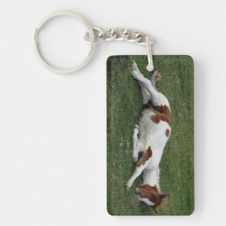 Dartmoor Hill Pony Foal Laying Doen Resting Keychain