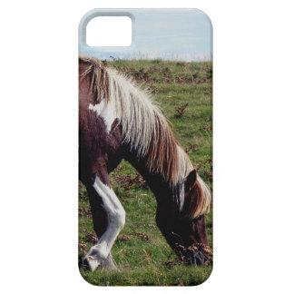 Dartmoor Hill Pony Grazeing iPhone SE/5/5s Case