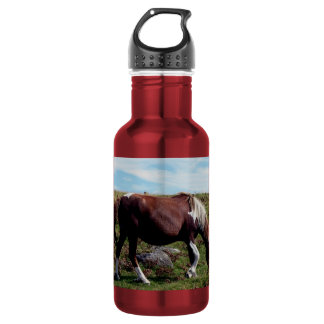 Dartmoor Hill Pony Grazeing Stainless Steel Water Bottle