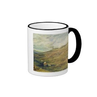 Dartmoor: La fuente de Tamar y del Torridge Taza