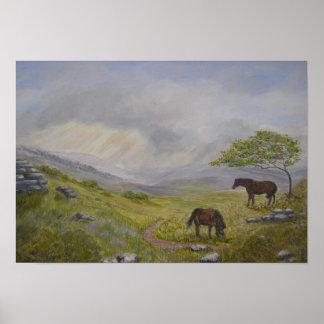 Dartmoor National Park Devon UK Print