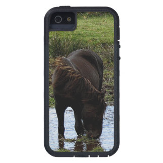 Dartmoor Pony Drinking At Watering Hole  . 1 iPhone 5 Case