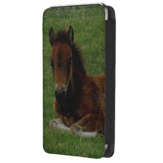 Dartmoor Pony Foal Resting Galaxy S5 Pouch