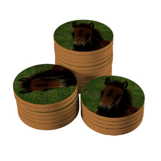 Dartmoor Pony Foal Resting Poker Chips Set
