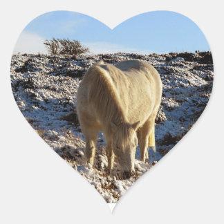 Dartmoor Pony Grazeing In Snow Heart Sticker