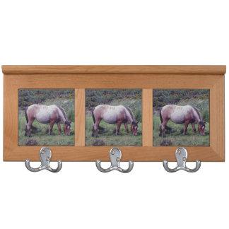 Dartmoor Pony Grazing Autumn Coat Rack