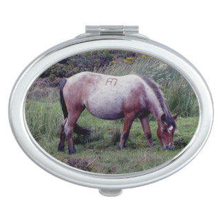 Dartmoor Pony Grazing Autumn Vanity Mirrors