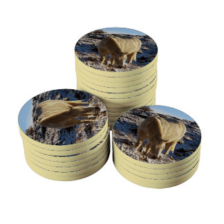 Dartmoor Pony Grazing In Snow Poker Chip Set
