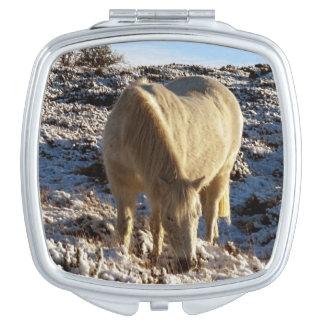 Dartmoor Pony Grazing In Snow Vanity Mirrors