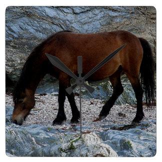 Dartmoor Pony In Rocks On Remote South Devon Beach Square Wall Clocks