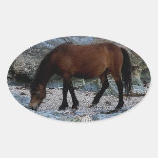 Dartmoor pony in rocks on remote south Devon beach Oval Sticker
