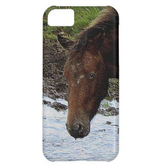 Dartmoor Pony In Watering Hole Case For iPhone 5C