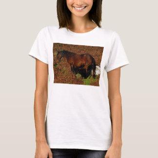 Dartmoor Pony Itching T-Shirt