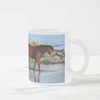 Dartmoor pony on remote beach in south Devon Frosted Glass Coffee Mug