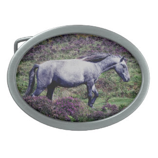 Dartmoor Pony Roaming In The Heather Oval Belt Buckle