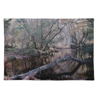Dartmoor River Dart Holne Chase Autunm .1. Cloth Placemat