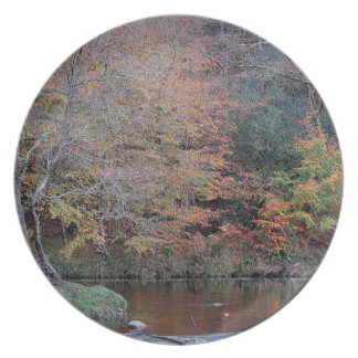 Dartmoor River Dart Holne Chase Autunm .2. Dinner Plate