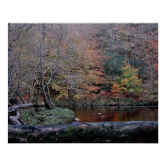 Dartmoor River Dart Holne Chase In Autunm  ( 2 ) Poster